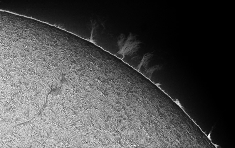 filament-proms_20160503_v1_ps1.jpg